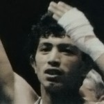 Sedam medalja na bokserskom prvenstvu sveta