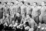 Zvezda, šampion 1951. godine