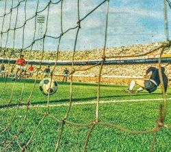 Lopta u jednu, golman Ćurković u drugu stranu, Holandija je izjednačila